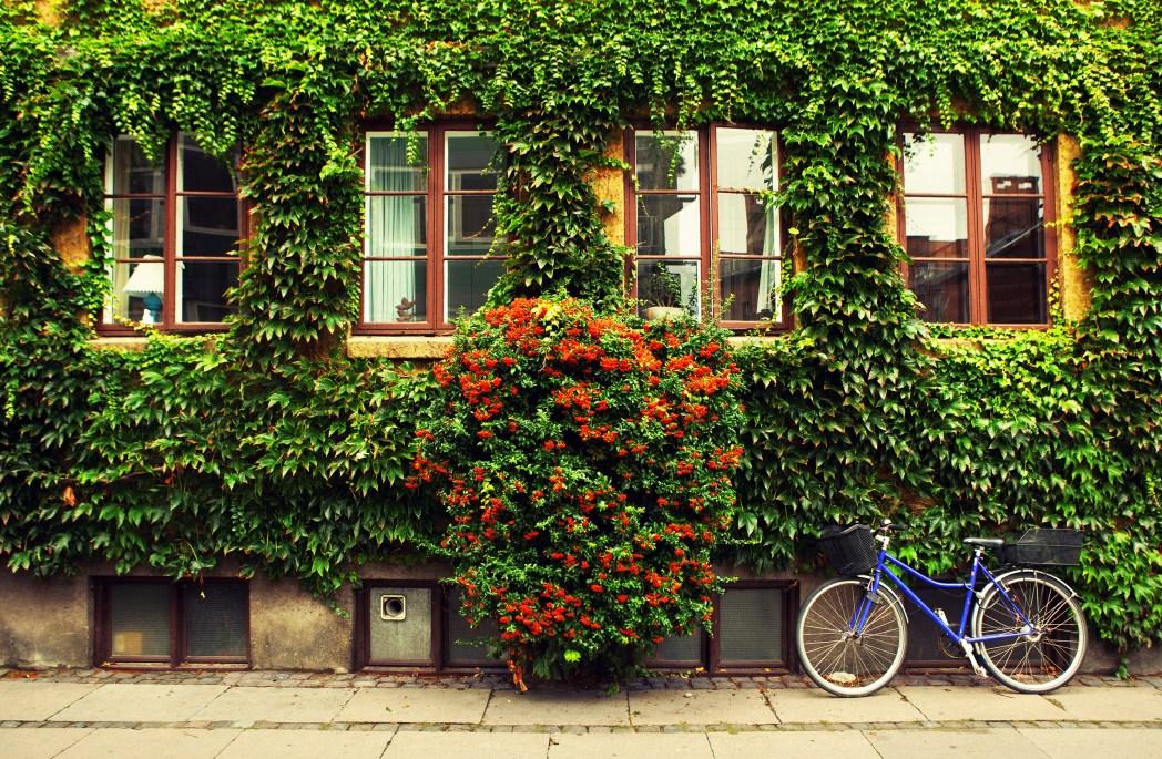 Bicycle on the street in Copenhagen