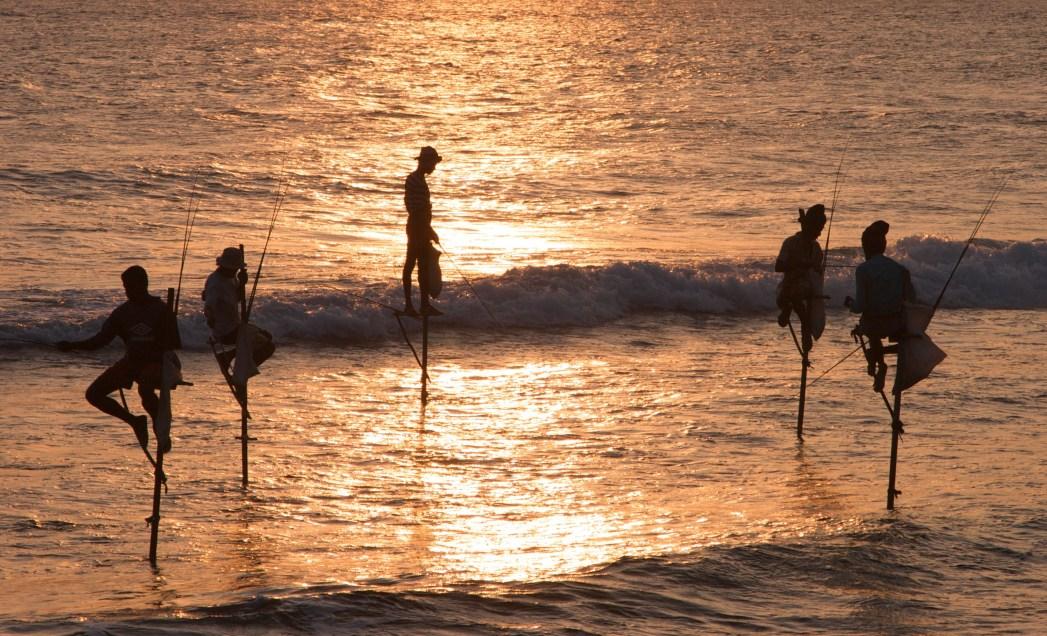 Stilt fishermen, Sri Lanka