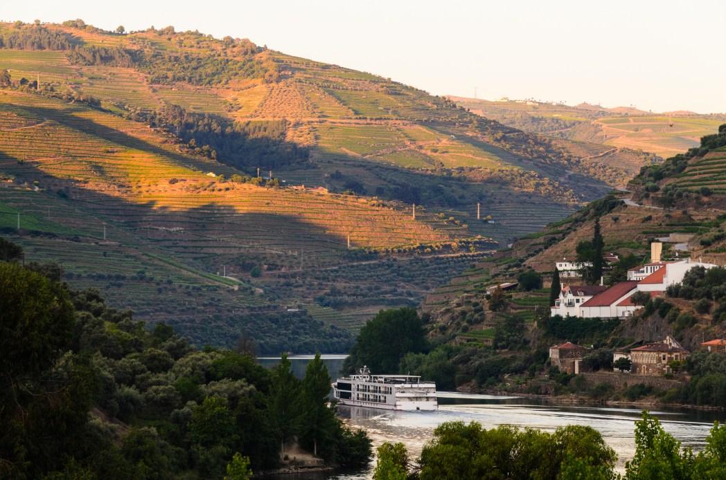 Vineyards of the Douro region
