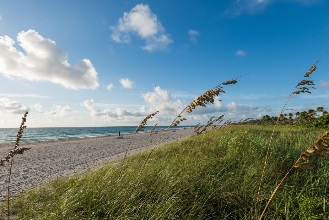 Delray Beach in Palm Beach, one of Florida's most popular beach destinations