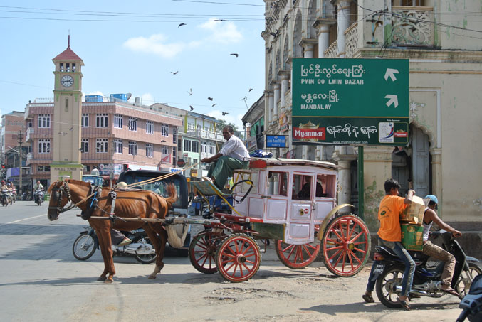 Horse and cart in Py Oo Lwin ©Catherine McGloin