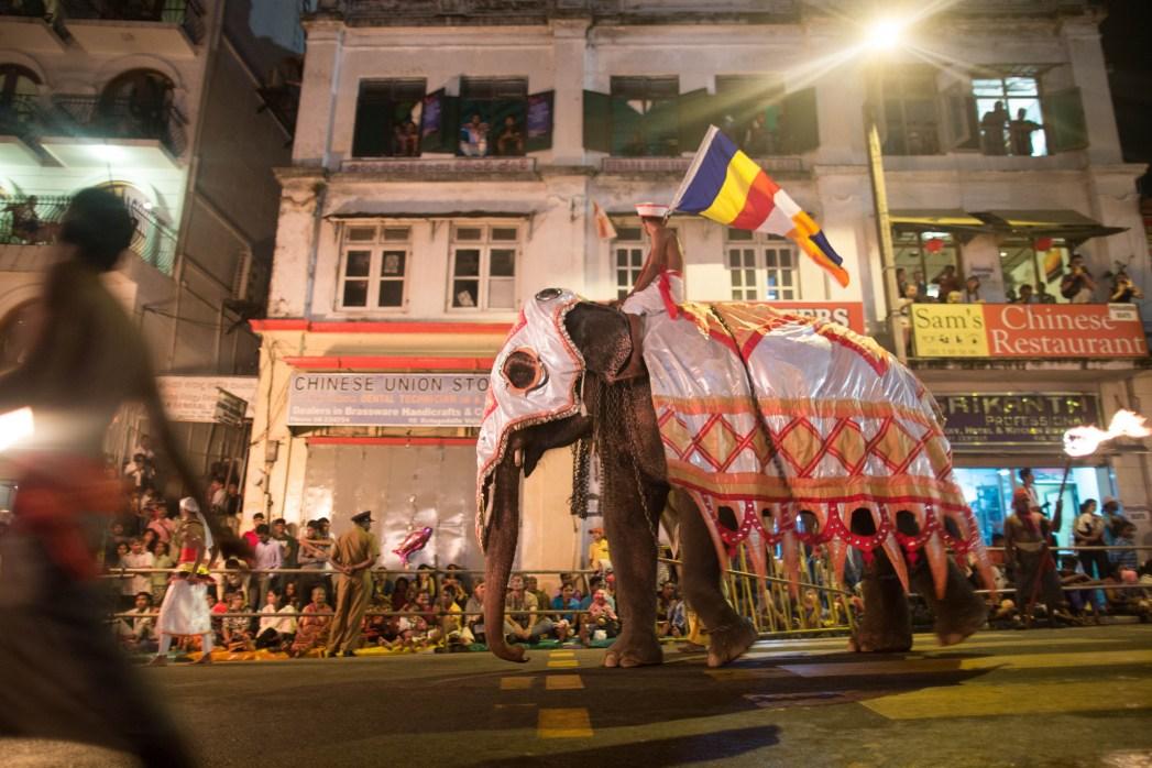Elephant parades through the streets of Kandy, Sri Lanka