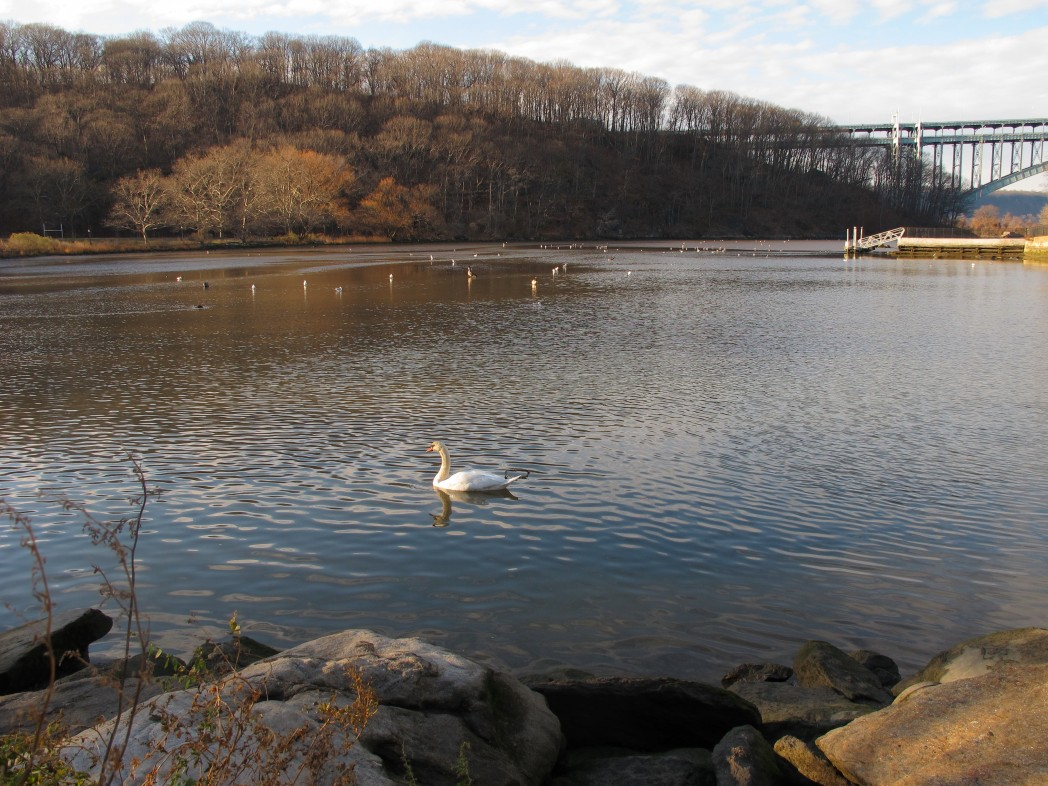 Inwood Hill Park, NYC