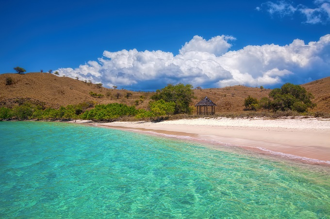 pink beach, Komodo, Indonesia - find cheap flights to Komodo