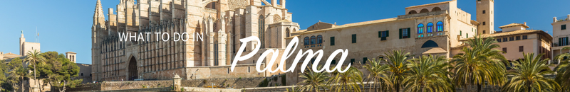 what to do in palma