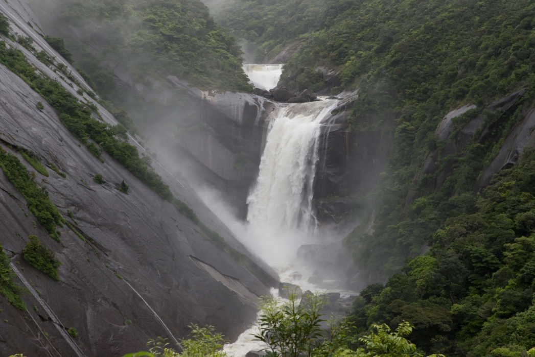 Yakushima waterfall Japan
